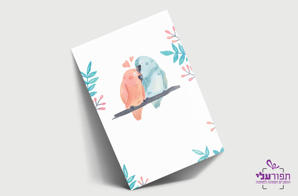 כרטיס ברכה מעוצב - ציפורים